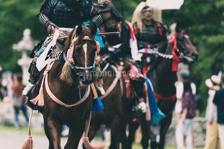 騎馬武者の写真素材 [FYI04509458]