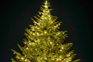 ピカピカ光るクリスマスツリー(クリスマスマーケット)の写真素材 [FYI04509629]