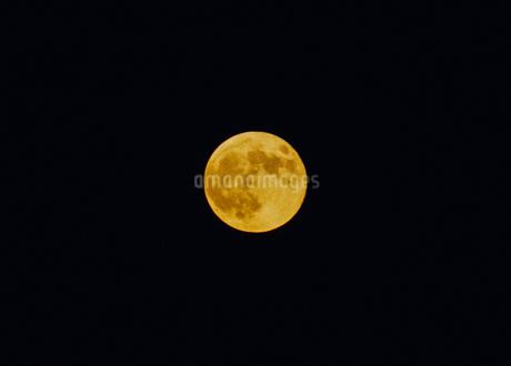 美しい満月のイメージの写真素材 [FYI04509642]