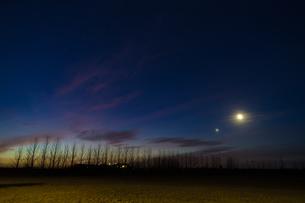 アイスランドの朝明けと並木道の写真素材 [FYI04510030]
