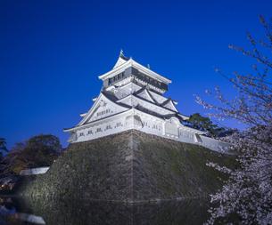 福岡県 桜 小倉城 (勝山公園) 夕景の写真素材 [FYI04510125]