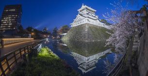 福岡県 桜 小倉城 (勝山公園) 夕景の写真素材 [FYI04510127]