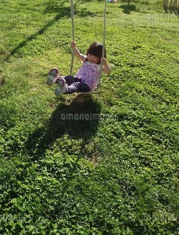 ブランコで元気に遊ぶ子供の写真素材 [FYI04510169]