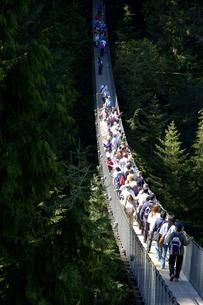 カナダ バンクーバー キャピラノのサスペンションブリッジの写真素材 [FYI04510259]