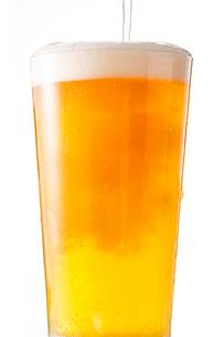 ビールの写真素材 [FYI04511261]
