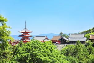 世界文化遺産 清水寺と快晴の空の写真素材 [FYI04512263]