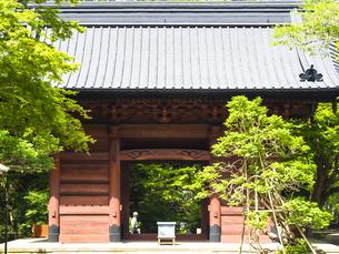 鎌倉・妙本寺の門の写真素材 [FYI04512954]