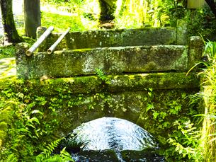 新緑の季節の北鎌倉明月院通りの写真素材 [FYI04512983]