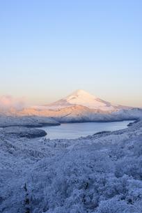 神奈川県 降雪後の大観山より富士山の写真素材 [FYI04513639]