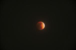 月食の写真素材 [FYI04514164]