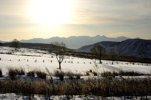 霧ヶ峰高原雪景色の写真素材 [FYI04514740]