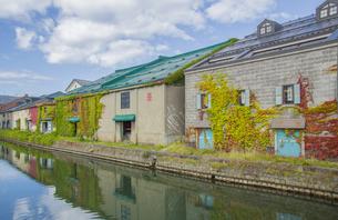 小樽運河倉庫街の紅葉の写真素材 [FYI04514792]