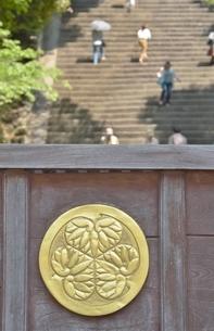 知恩院の正面にある賽銭箱の写真素材 [FYI04514887]