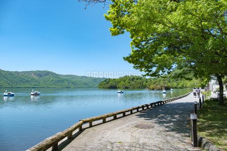 十和田湖 - 遊歩道の写真素材 [FYI04514940]