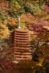 談山神社の写真素材 [FYI04515140]