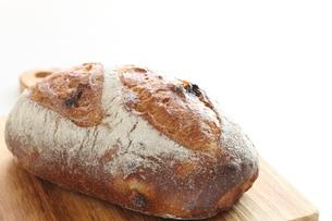 フランスパンの写真素材 [FYI04515906]