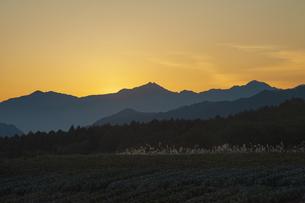 北アルプス夕映えの写真素材 [FYI04515933]