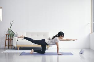室内でノートパソコンを見ながら運動する女性の写真素材 [FYI04516564]