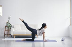 室内でノートパソコンを見ながら運動する女性の写真素材 [FYI04516567]