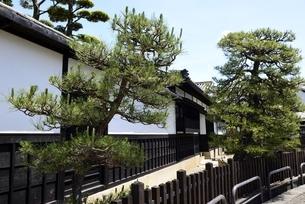 新緑,倉敷美観地区,白壁屋敷の写真素材 [FYI04516937]