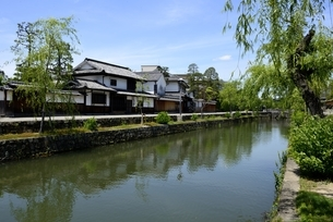 新緑,倉敷美観地区,倉敷川と伝統的建造物の写真素材 [FYI04516940]