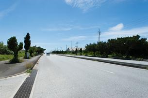 街路樹が並ぶ直線の綺麗なアスファルトの道路の写真素材 [FYI04517101]