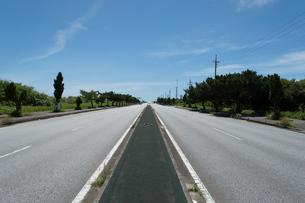 街路樹が並ぶ直線の綺麗なアスファルトの道路の写真素材 [FYI04517113]