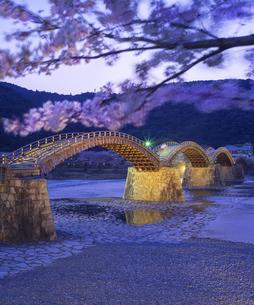 山口県 桜 錦帯橋 夕景の写真素材 [FYI04517182]