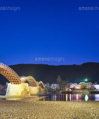 山口県 桜 錦帯橋 夕景の写真素材 [FYI04517185]