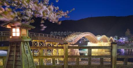 山口県 桜 錦帯橋 夕景の写真素材 [FYI04517189]