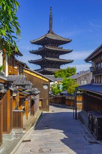 初夏の青空に聳える八坂の塔の写真素材 [FYI04517227]