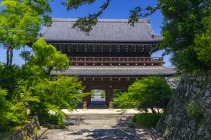知恩院の三門と新緑の写真素材 [FYI04517228]