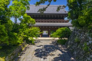知恩院の三門と新緑の写真素材 [FYI04517229]
