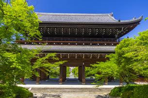 知恩院の三門と新緑の写真素材 [FYI04517240]