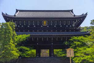 知恩院の三門と新緑の写真素材 [FYI04517243]