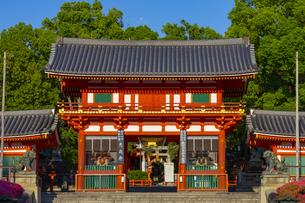夕日を浴びる八坂神社の西楼門の写真素材 [FYI04517281]