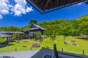 初夏の高台寺庭園と開山堂の写真素材 [FYI04517287]