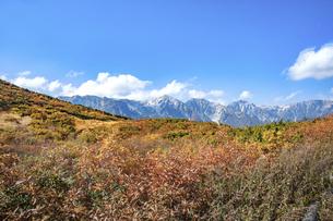 北アルプス・白馬三山と紅葉の写真素材 [FYI04517310]