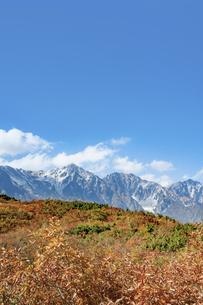 北アルプス・白馬三山と紅葉の写真素材 [FYI04517311]