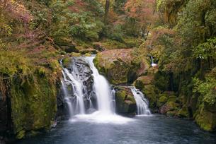 晩秋の菊池渓谷 竜ヶ淵と天狗滝の写真素材 [FYI04517321]