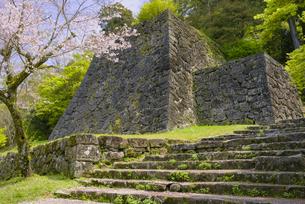さくら咲く人吉城跡の写真素材 [FYI04517351]
