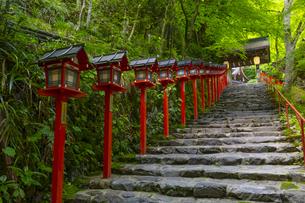 貴船神社の参道の写真素材 [FYI04517588]