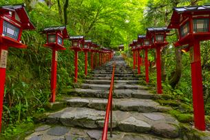 貴船神社の参道の写真素材 [FYI04517589]