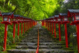 貴船神社の参道の写真素材 [FYI04517591]