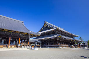 東本願寺の御影堂と阿弥陀堂の写真素材 [FYI04517599]