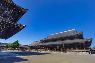 東本願寺の御影堂と阿弥陀堂の写真素材 [FYI04517600]