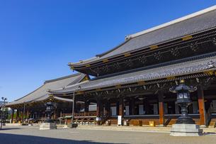 東本願寺の御影堂と阿弥陀堂の写真素材 [FYI04517601]