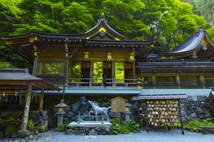 緑の森に覆われる貴船神社の写真素材 [FYI04517618]
