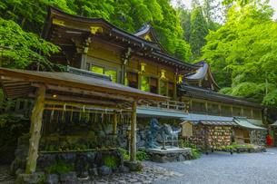 緑の森に覆われる貴船神社の写真素材 [FYI04517619]