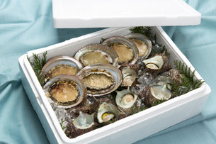 魚貝類詰め合わせの写真素材 [FYI04518249]